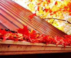 Clogged gutter full of leaves that need gutter cleaning